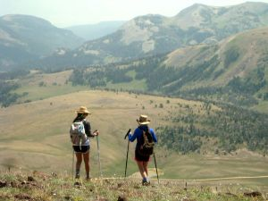 Did You Know Interesting Facts about Hiking